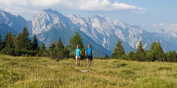 Wandern Mieminger Plateau / Hiking Mieminger Plateau
