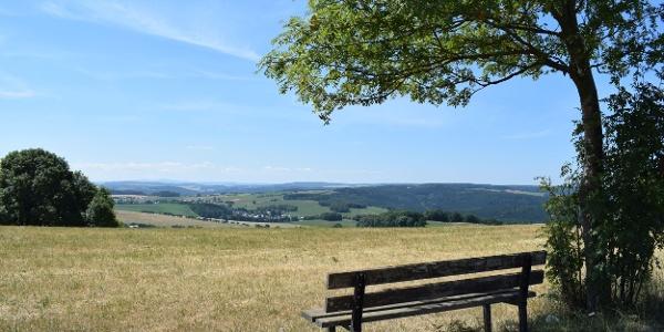 Aussicht Dittersdorfer Höhe