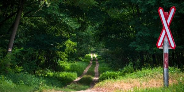 A túra első pár kilométere egyenesen a tanyavilág belsejébe vezet