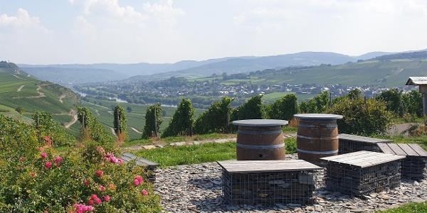 Ruheinsel bei Osann-Monzel