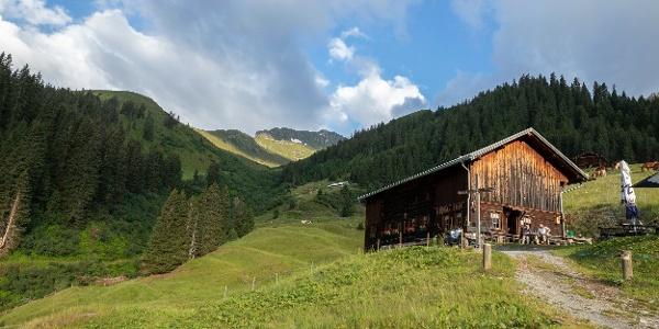 Alpe Rongg (c) Lucas Tiefenthaler / Vorarlberg Tourismus