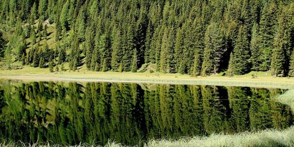 Cece Lake