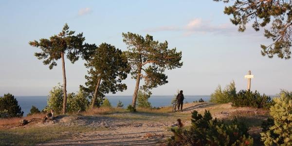 Biketour on the Curonian Spit