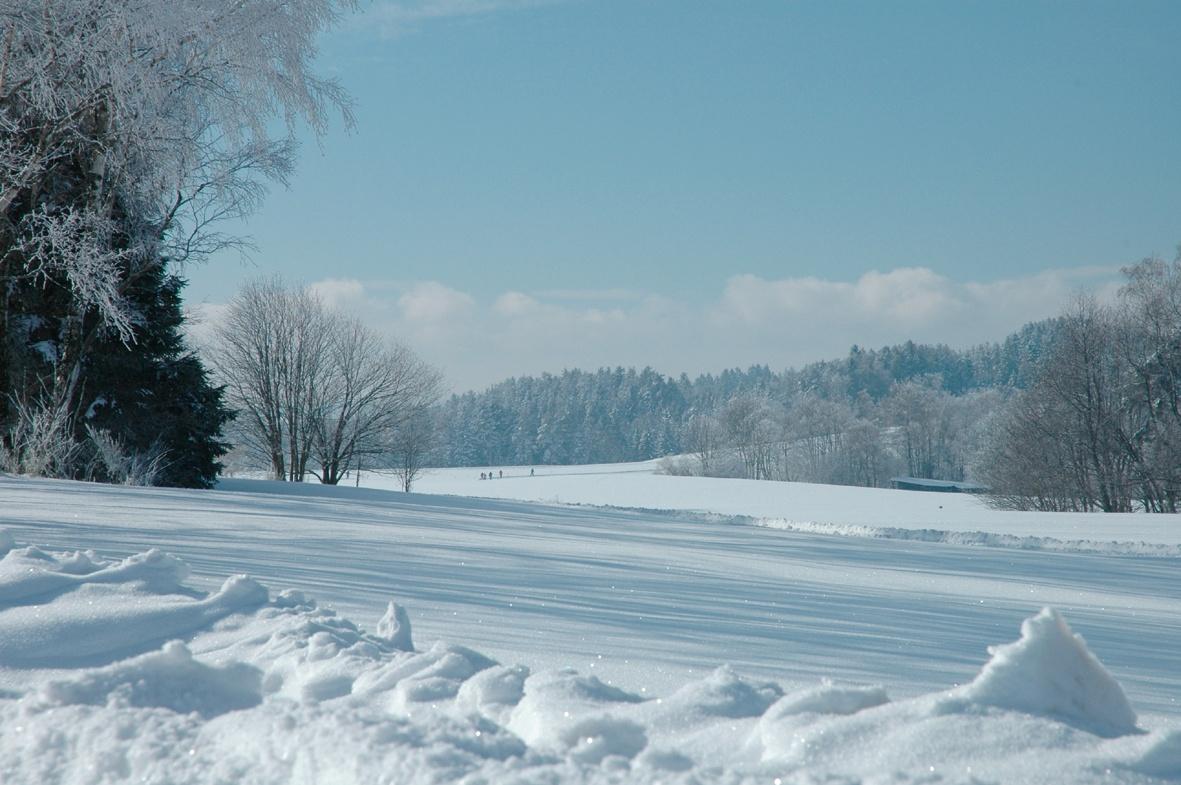 Fohrenbühl im Winter