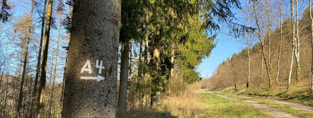 A4 Flammersbach