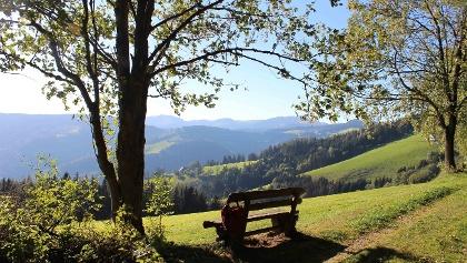Königskogel, Ausblick Sommeralm
