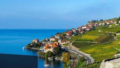 Weinterrassen des Lavaux und Genfersee.