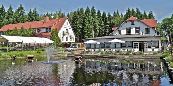 Teich an der Waldschänke