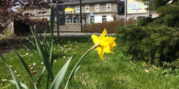 Frühling am Bahnhof in Bestwig