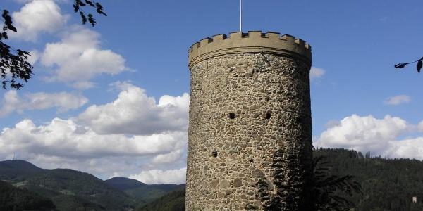 Blick auf Burg Husen