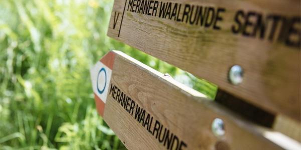 Saltauser Waalweg Trail