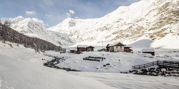 Escursione invernale da Plan alla Valle di Lazins
