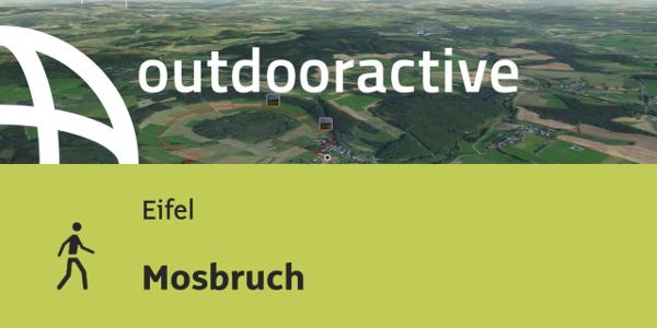 Wanderung in der Eifel: Mosbruch