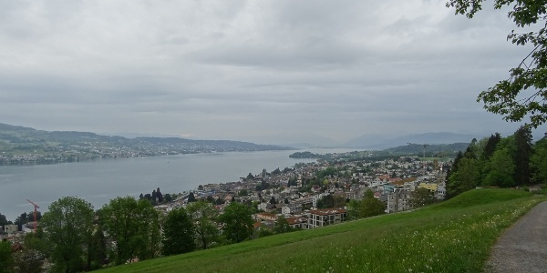 0100 Hoch über dem Zürichsee - hier rückblickend