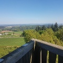Image de profil de Nicole Baller / Tourist-Information Wittlich Stadt und Land