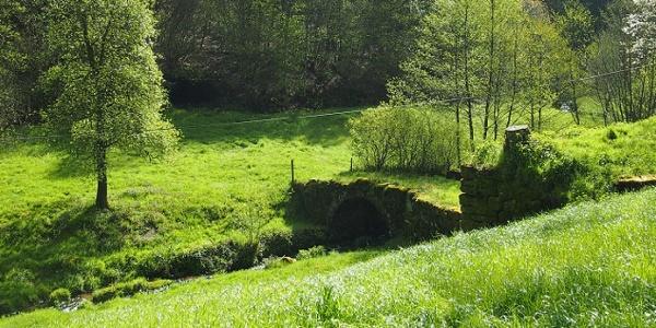 Brücke unterhalb der Holznersmühle