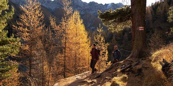 Höhenweg im Val Trupchun