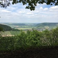 Blick ins Saaletal Richtung Dornburg