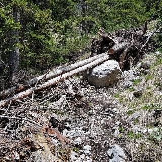Der Abstieg Richtung Wasserwart Diensthütte ist anspruchsvoll. Teilweise versperrt noch Windbruch den Weg.