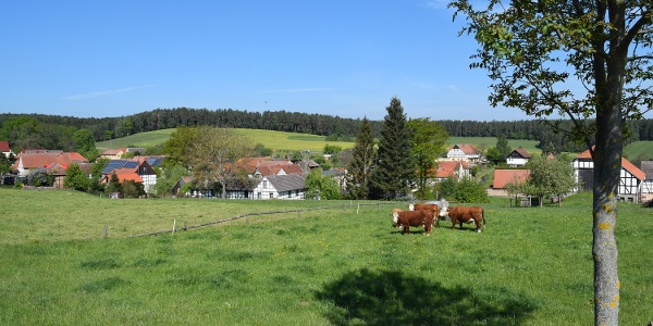Blick auf Rosendorf