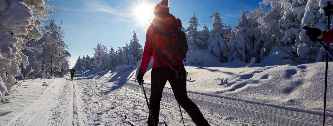 Langlaufen in der Urlaubsregion Altenberg - Erzgebirge