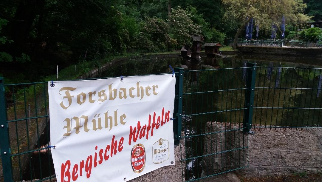 Ententeich und Freisitz, wenn man sich der Forsbacher Mühle nähert.