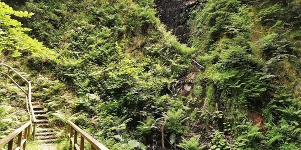Griesbacher Wasserfälle