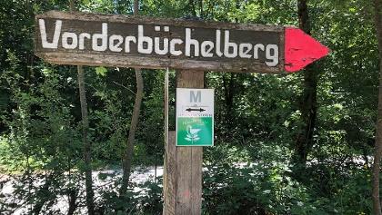 Tour M ab Vorderbüchelberg