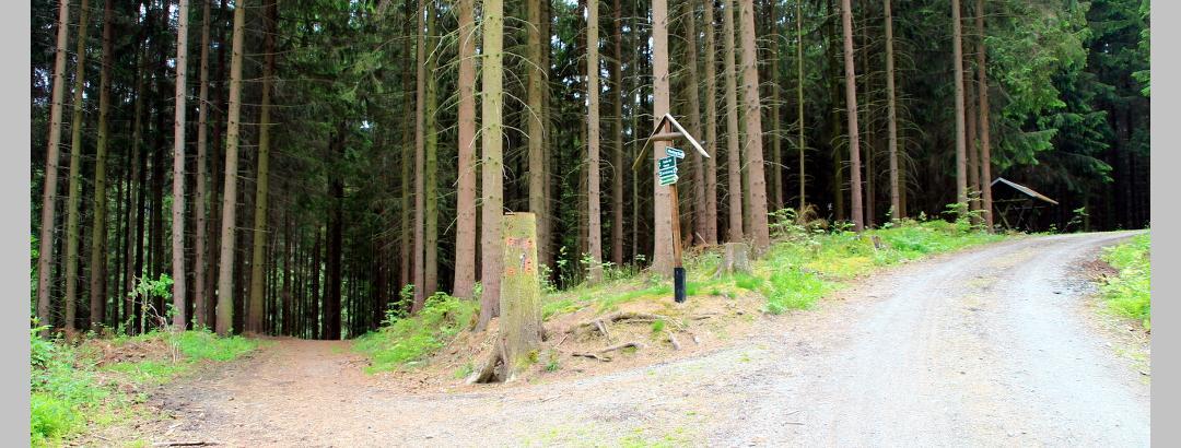 Naturlehrpfad Zwönitztal am Abzweig nach Eibenberg