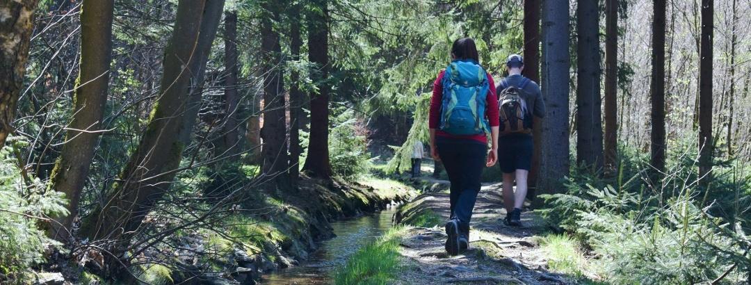 Wanderung am Röhrgraben