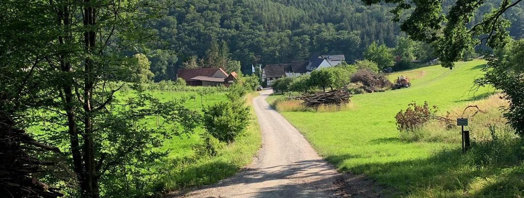 singletrails aschaffenburg)