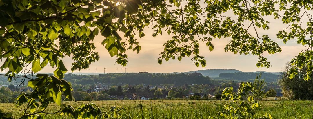 Blick vom Papenberg auf Herzberg