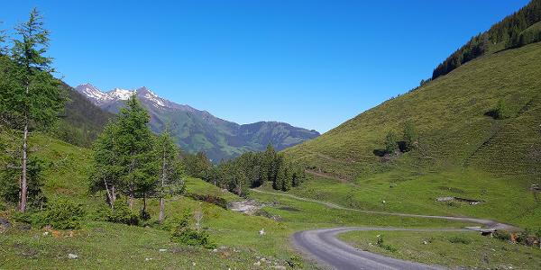 Mountainbike Tour durch das Sulzbachtal in Fusch