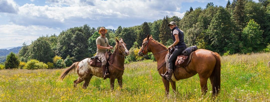 Escursione a cavallo nel Parco Regionale della Lessinia, La Via Delle PREALPI