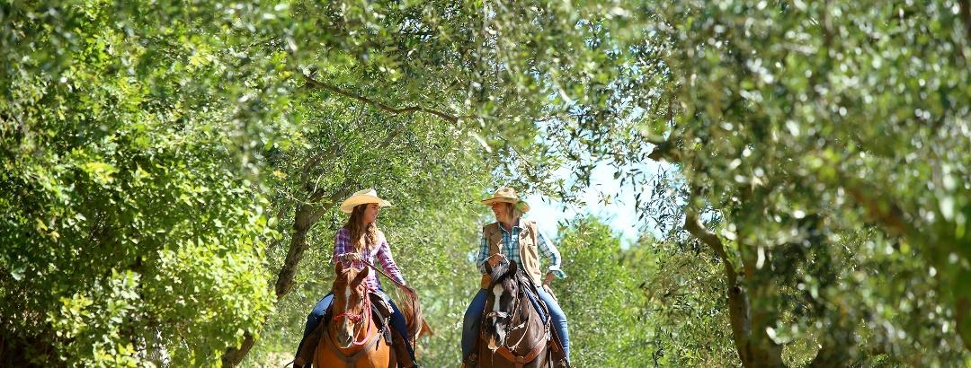 Valpolicella a Cavallo tra la natura - La Via delle PREALPI