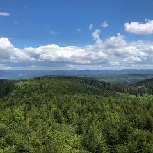 Blick vom Mooskopfturm
