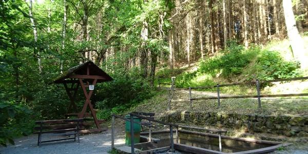 Wassertretbecken am Eckhardteich