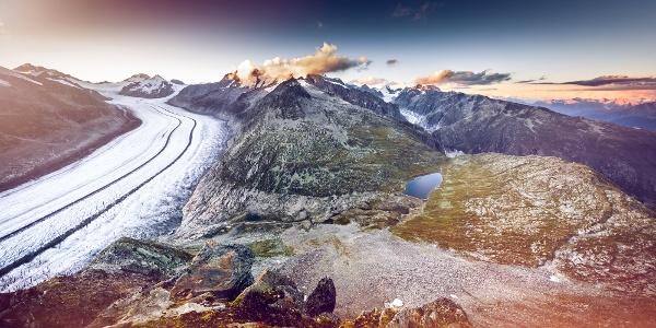 Blick auf den grossen Aletschgletscher mit dem Fieschgletscher im Hintergrund