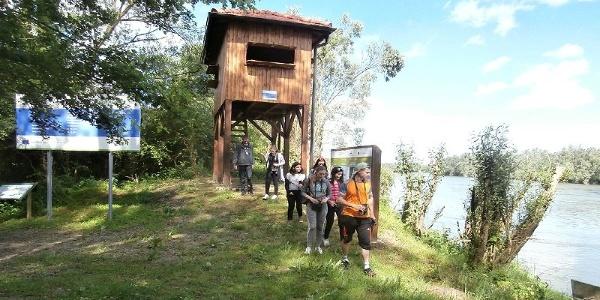 Birdwatching tower in Noskovci