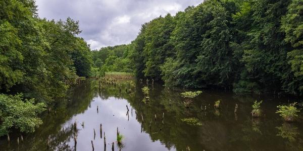 """A Hubertlaki-tó (a bakonyi """"Gyilkos-tó"""")"""