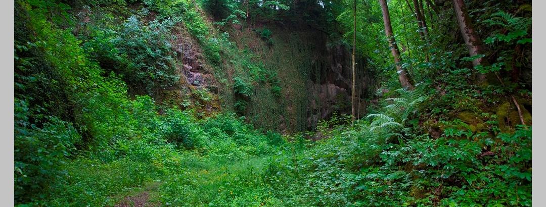 Steinbruch an der Peperburg