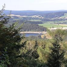Blick vom Bärenstein