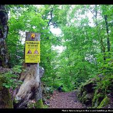 Pfad im Naturschutzgebiet Klamm und Kastelhänge