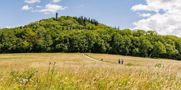 Wandern - Geisingberg