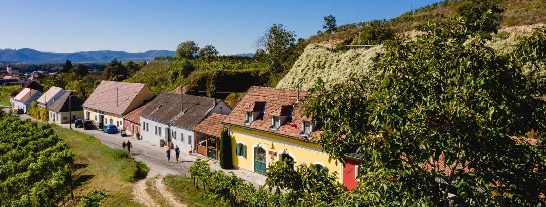 Kellergasse Rohrendorf