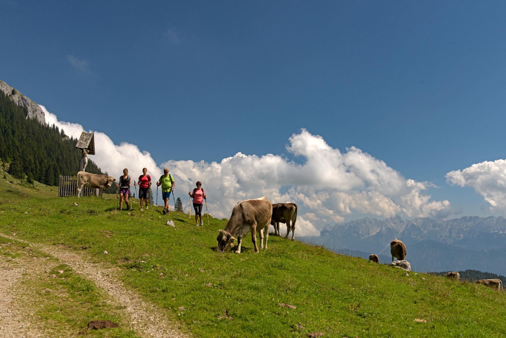 Wandern im Brünnsteingebiet/Himmelmoos Almen