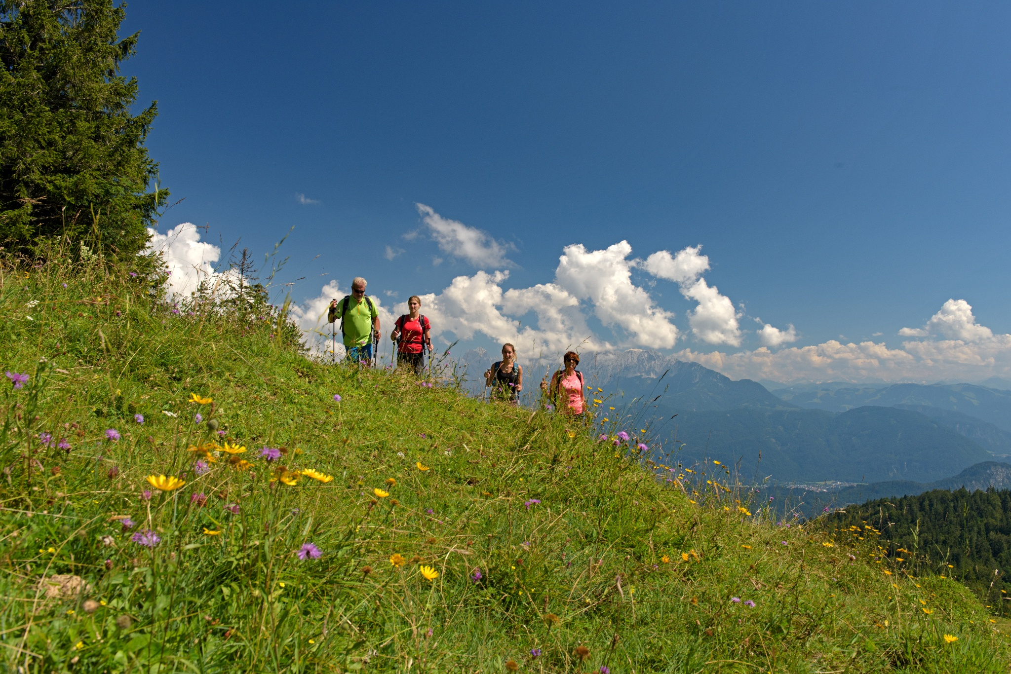 Wandern im Brünnsteingebiet