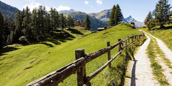 Rheinwald Route