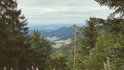 Ausblick Seebach