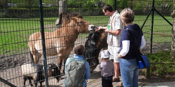 Familie im Klever Tierpark